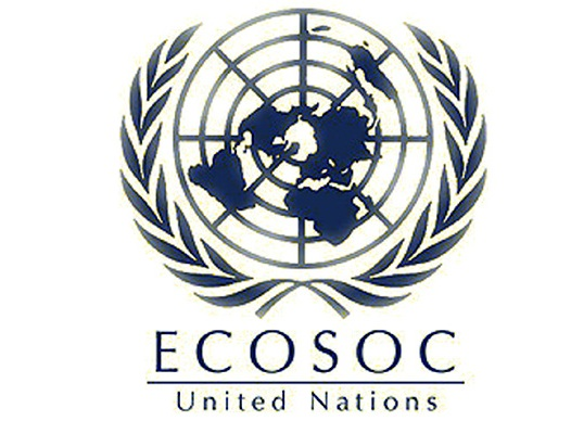 India re-elected to ECOSOC